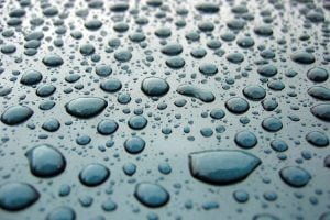 Hundreds of raindrops close-up isolated on the hood of a car.
