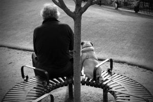 A black and white photo of a similarly shaped man and dog sitting in the park watching others play.
