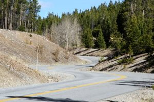 An empty winding road with a forest along the sides in Colorado.