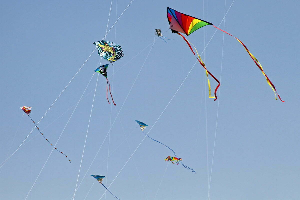 Colorful kites fly among the strings of other kites during the annual Cherry Blossom Kite Festival on the National Mall.