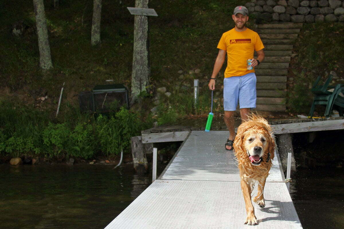 A wet golden retriever dog runs down a dock with his tongue out looking forward to jumping in the lake.