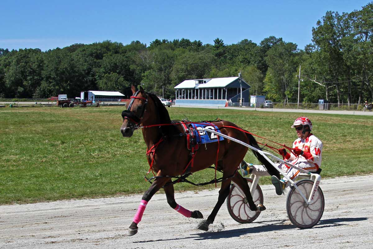 A sulky driver and trotter harness racing around a track in Maine.