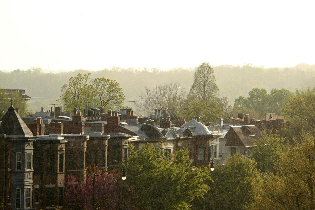 A row of townhouses and trees in Adams Morgan seen through a sunny spring rain in Washington DC.