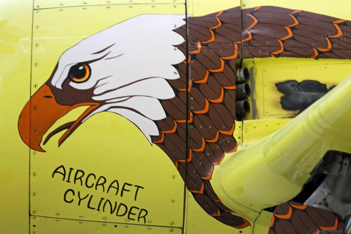 A photo of a bald eagle painted on the nose of an aircraft at the National Air and Space Museum in Virginia.