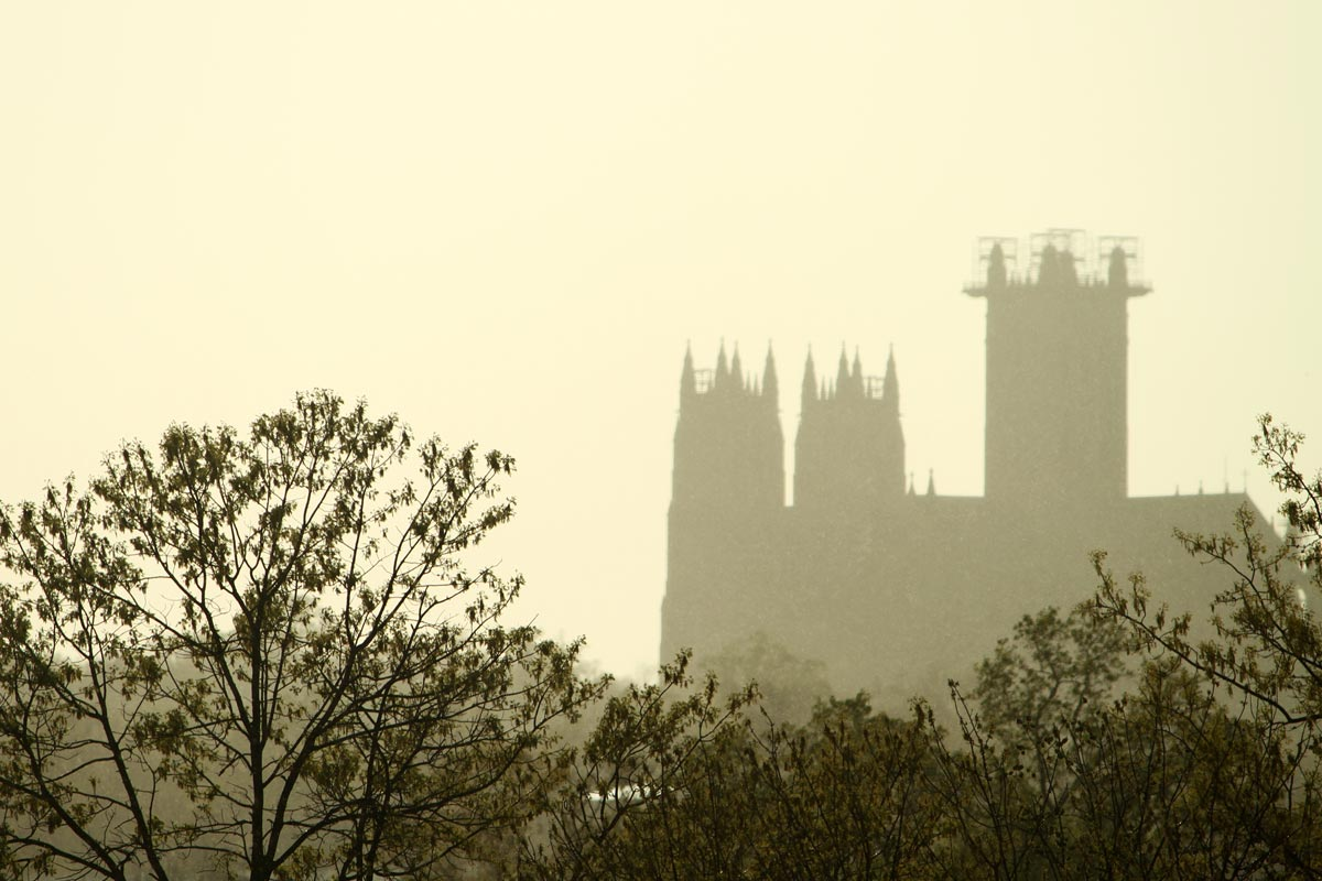 A photo of the silhouettes of trees and the Washington National Cathedral in a sunny spring rain in Washington DC.