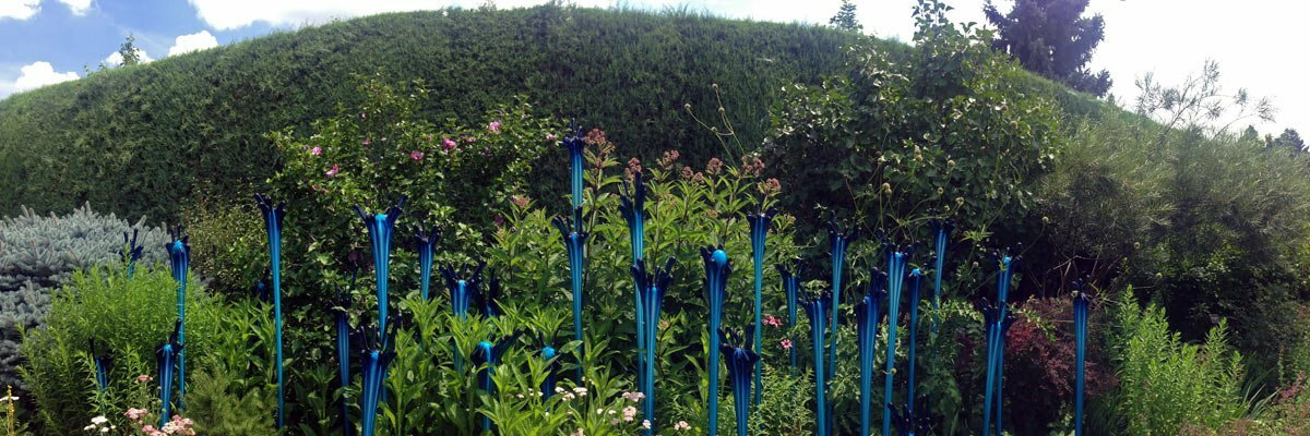 A panoramic photo of Chihuly's blue glass sculptures comes out of a flower bed at the Denver Botanic Gardens in Colorado.