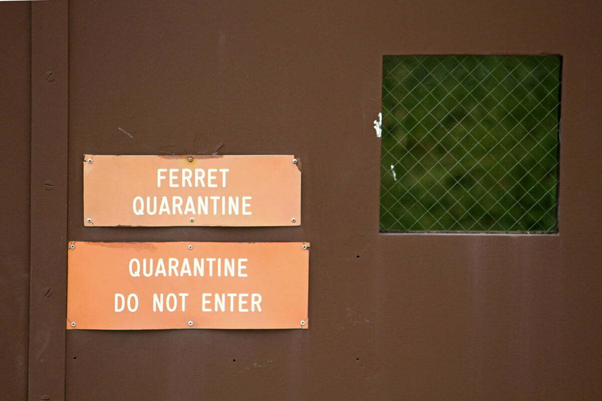 A sign warning visitors about a Ferret Quarantine seen at the Smithsonian Conservation Biology Institute in Front Royal, Virginia.