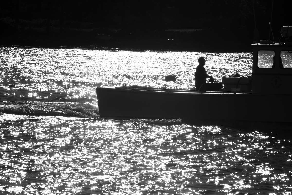 A Maine lobsterman works on his boat as the sun reflects off the water.
