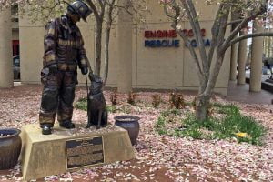 """A picture of the """"Ashes to Answers"""" National Fire Dog Monument among cherry blossom leaves in Washington DC."""