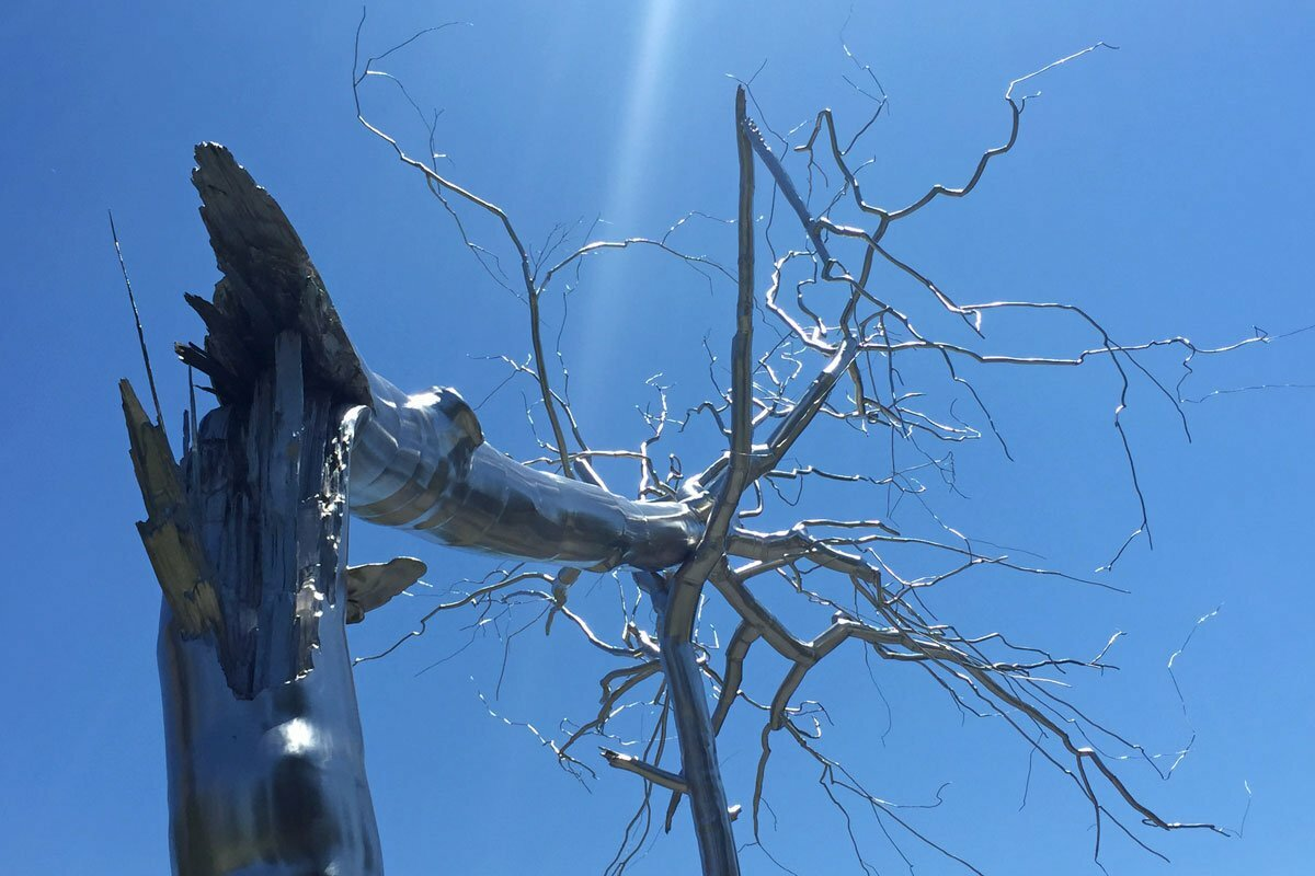A photograph looking up at the 'Symbiosis' sculpture by Roxy Paine of a metal tree splintered and collapsed into another tree.