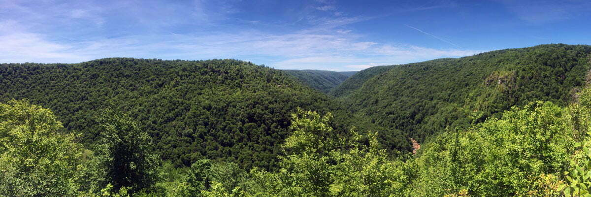 A panorama of lush green forests, clear blue skies and a fast river that showcase the unbroken wilderness of Blackwater Falls State Park in West Virginia.